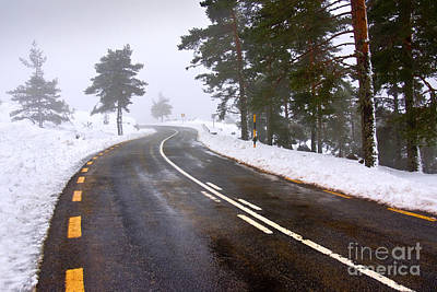 Snowy Road Print by Carlos Caetano
