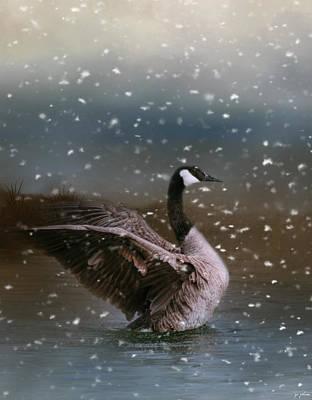 Goose Photograph - Snowy Swim by Jai Johnson