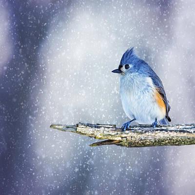 Titmouse Digital Art - Snowy Winter Titmouse by Bill Tiepelman