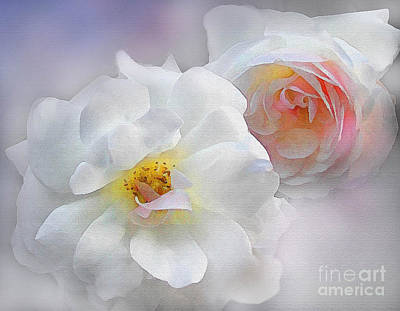 Soft Roses Print by Robert Foster