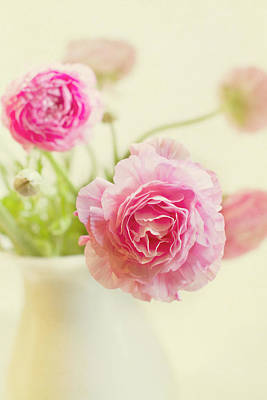 Pink Flower Photograph - Softly by Rebecca Cozart