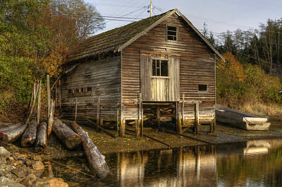 Sointula Boat Shed Print by Darryl Luscombe