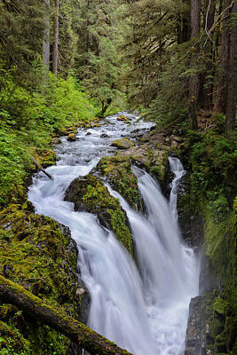Photograph - Sol Duc by Doug Oglesby