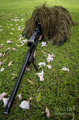 Hiding Photograph - Soldier Practices Sniper Tactics by Stocktrek Images