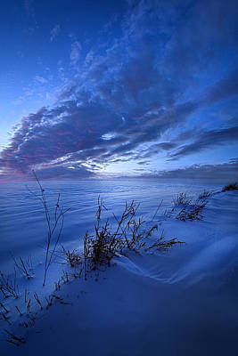 Unity Photograph - Solitaire Moments Dressed In Blue by Phil Koch
