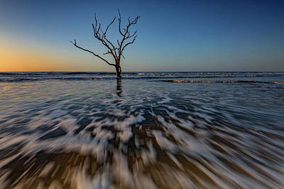 Edisto Photograph - Solitary by Rick Berk