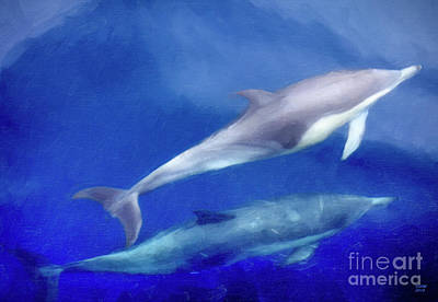 Dolphin Painting - Solitude by David Millenheft
