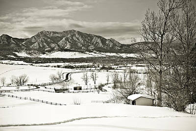 Winter Photograph - Solitude In Boulder County by Marilyn Hunt