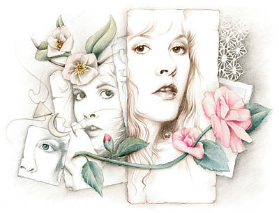 Stevie Drawing - Some Lace And Paper Flowers by Johanna Pieterman