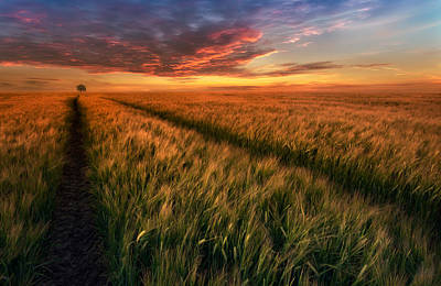 Poland Photograph - Somewhere At Sunset by Piotr Krol (bax)