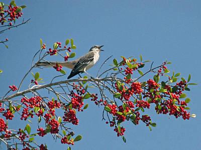 Song Of The Mockingbird Original by Peg Urban