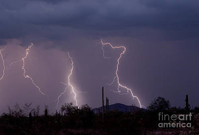 Images Lightning Photograph - Sonoran Storm by James BO  Insogna