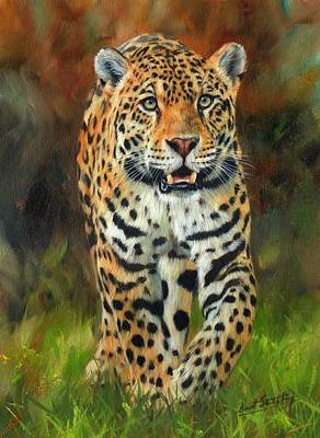 Jungle Cat Painting - South American Jaguar by David Stribbling