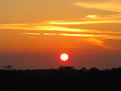 South Carolina Sunset Print by Shane Brumfield