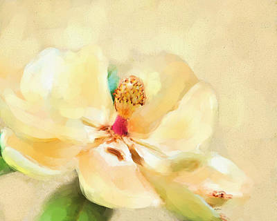 Flower Painting - Southern Magnolia Flower by Jai Johnson