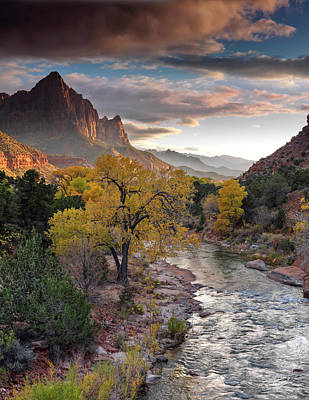 Southern Utah Photograph - Southwest Light Along The Virgin River by Leland D Howard