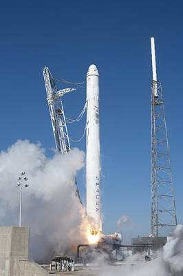 Photograph - Spacex�s Falcon 9 Rocket And Dragon by Everett