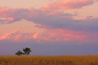 Spacious Skies Amber Waves Of Grain Boulder County Print by James BO  Insogna