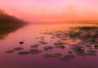 Expensive Photograph - Spanish Lake At Morning No.5 by Michael DeBlanc