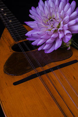 Hand Made Photograph - Spanish Mandolin And Dahlia by Garry Gay