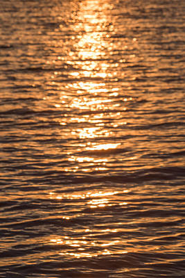 Sparkling Water Print by Terry DeLuco