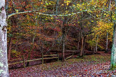 Natchez Trace Parkway Photograph - Sparkling With Colors - Natchez Trace by Debra Martz