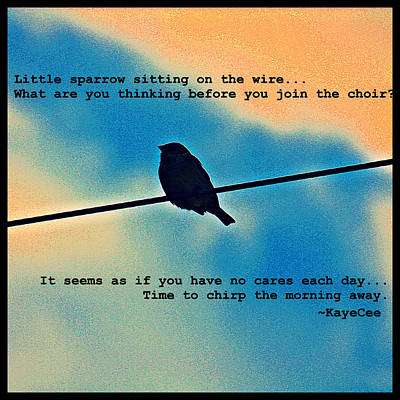 Sparrow On The Wire- Fine Art And Poetry Print by KayeCee Spain