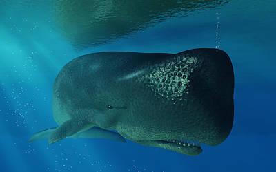Whale Digital Art - Sperm Whale by Daniel Eskridge