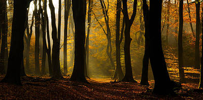 Speulder Panorama Print by Martin Podt