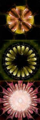 Merging Painting - Sphinxlike Au Naturel Flowers  Id 16164-214623-73270 by S Lurk