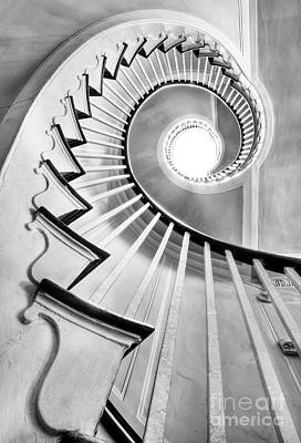 Black And White Photograph - Spiral Staircase Lowndes Grove  by Dustin K Ryan