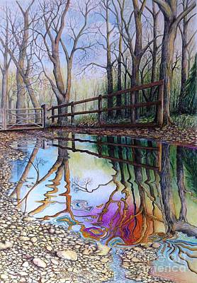 Reflective Drawing - Spirit Of The Woods by David Neace