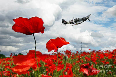 Poppy Digital Art - Spitfire Over The Poppy by J Biggadike