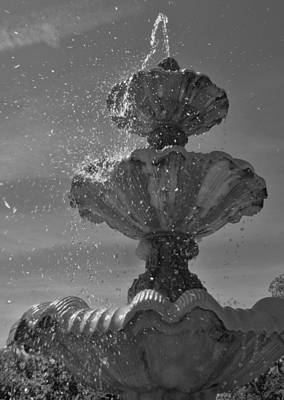 Photograph - Splash I by Anna Villarreal Garbis