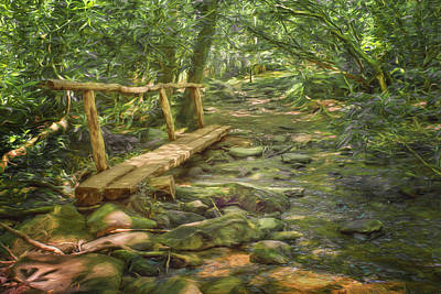 Split Log Bridge - Great Smoky Mountains  Print by Nikolyn McDonaldFootbridge - Great Smoky Mountains