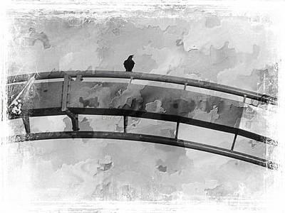 Roller Coaster Photograph - Spotted Bird Track by Sean Dorazio