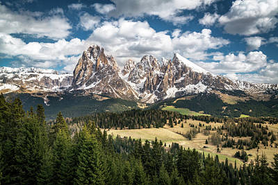 Dolomite Photograph - Spring At Alpe Di Suisi by James Udall