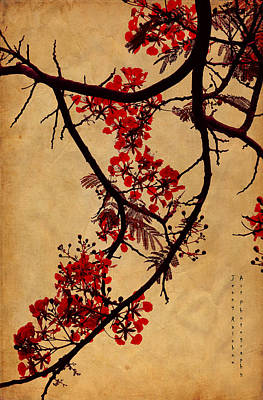 Spring Bloosom In Maldives. Flamboyant Tree I.  Japanese Style Print by Jenny Rainbow