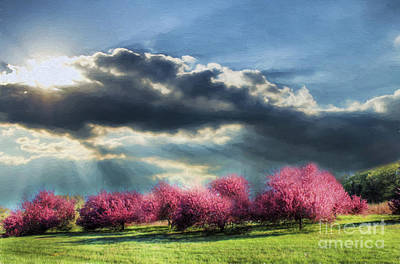 Spring Glory Print by Darren Fisher