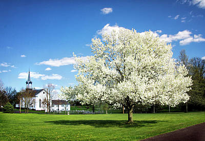 Zion Lutheran Church Photograph - Spring In The Country by Carolyn Derstine
