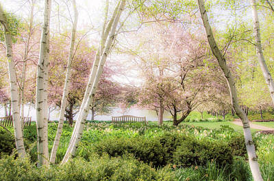 Spring In The Garden Print by Julie Palencia