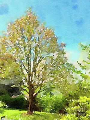 Digital Watercolor Photograph - Spring Maple by Kerri Farley