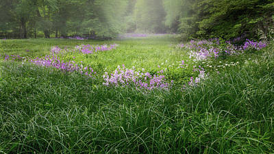 Spring Meadow 2016 Print by Bill Wakeley