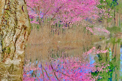 Flowers Photograph - Spring Waters by Nadia Sanowar