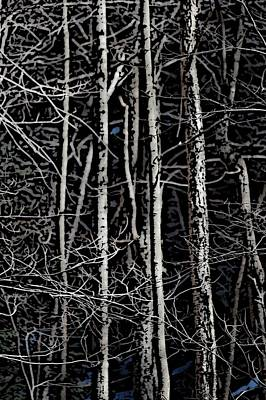 Ladnscape Digital Art - Spring Woods Simulated Woodcut by David Lane