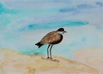 Lapwing Painting - Spur-winged Plover Mulling It Over by Tomer Rosen Grace
