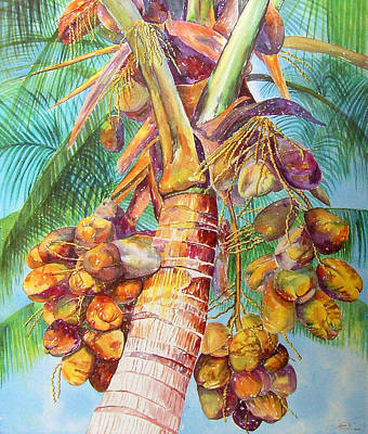 Squire's Coconuts Print by AnnaJo Vahle