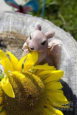 Squirrel And Sun Flower Print by Tara Lynn