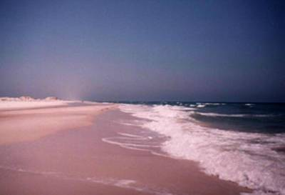 Photograph - St George Island by B L Qualls