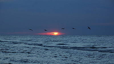 St. George Island Sunrise Print by Paul  Wilford